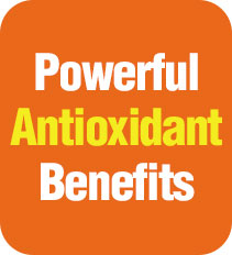 Powerful Antioxidant Benefits