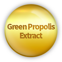 Green Propolis Extract